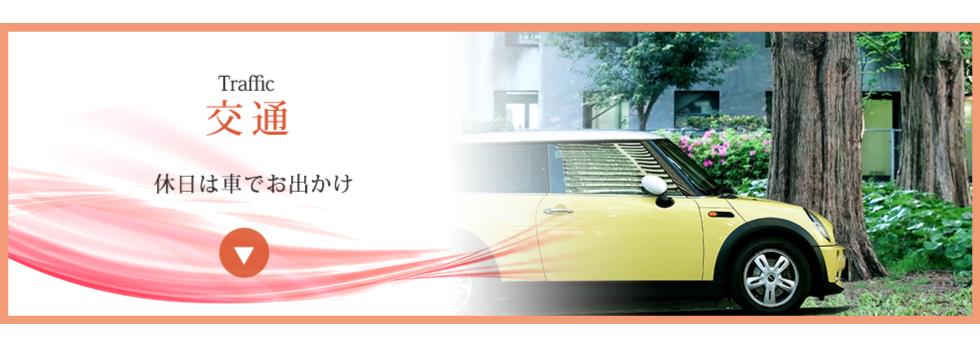 access_t_02